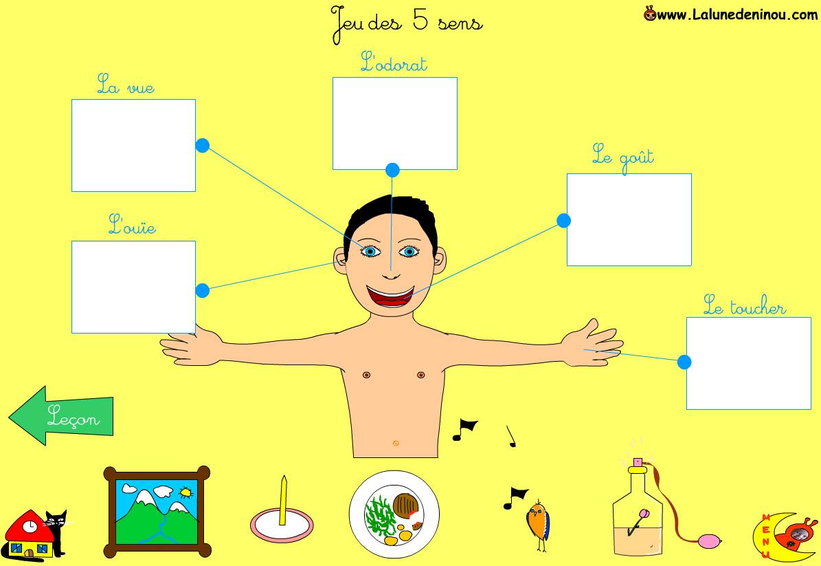 Jeux des 5 sens jeux pour enfants sur - Livre maternelle gratuit ...