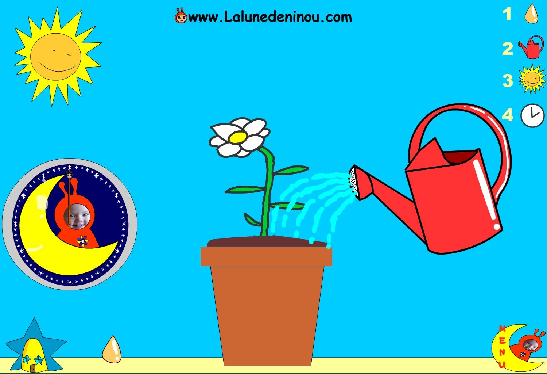 Faire pousser une fleur - Jeux pour enfants sur LaLunedeNinou.com
